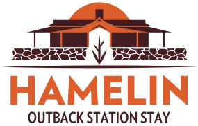 hamelin station home